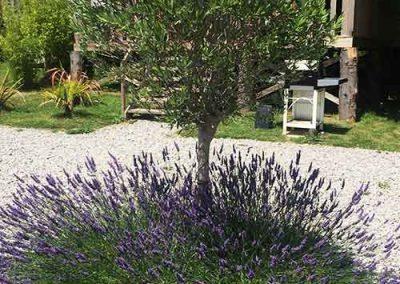 jardins1